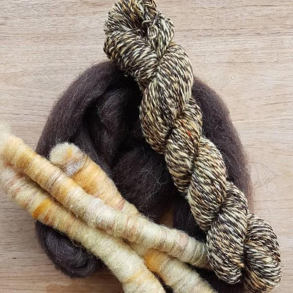 swifter wol met europese zwartbles